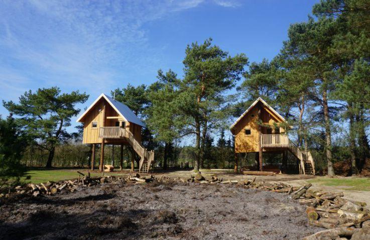 Boomhut Camping de Wije Werelt