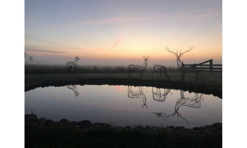 Overnachten in een landelijk gelegen natuurhuisje