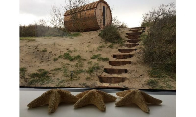 Natuurhuisje in de Duinen
