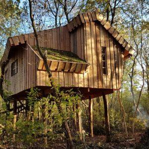 Boomhut camping de Reeënwissel