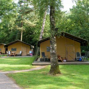 Safaritent Camping de Hertshoorn