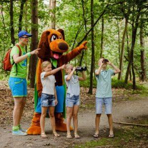 Vakantiepark de Jagerstee
