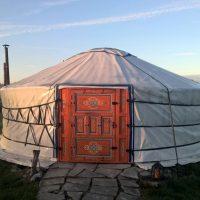 mobo yurt